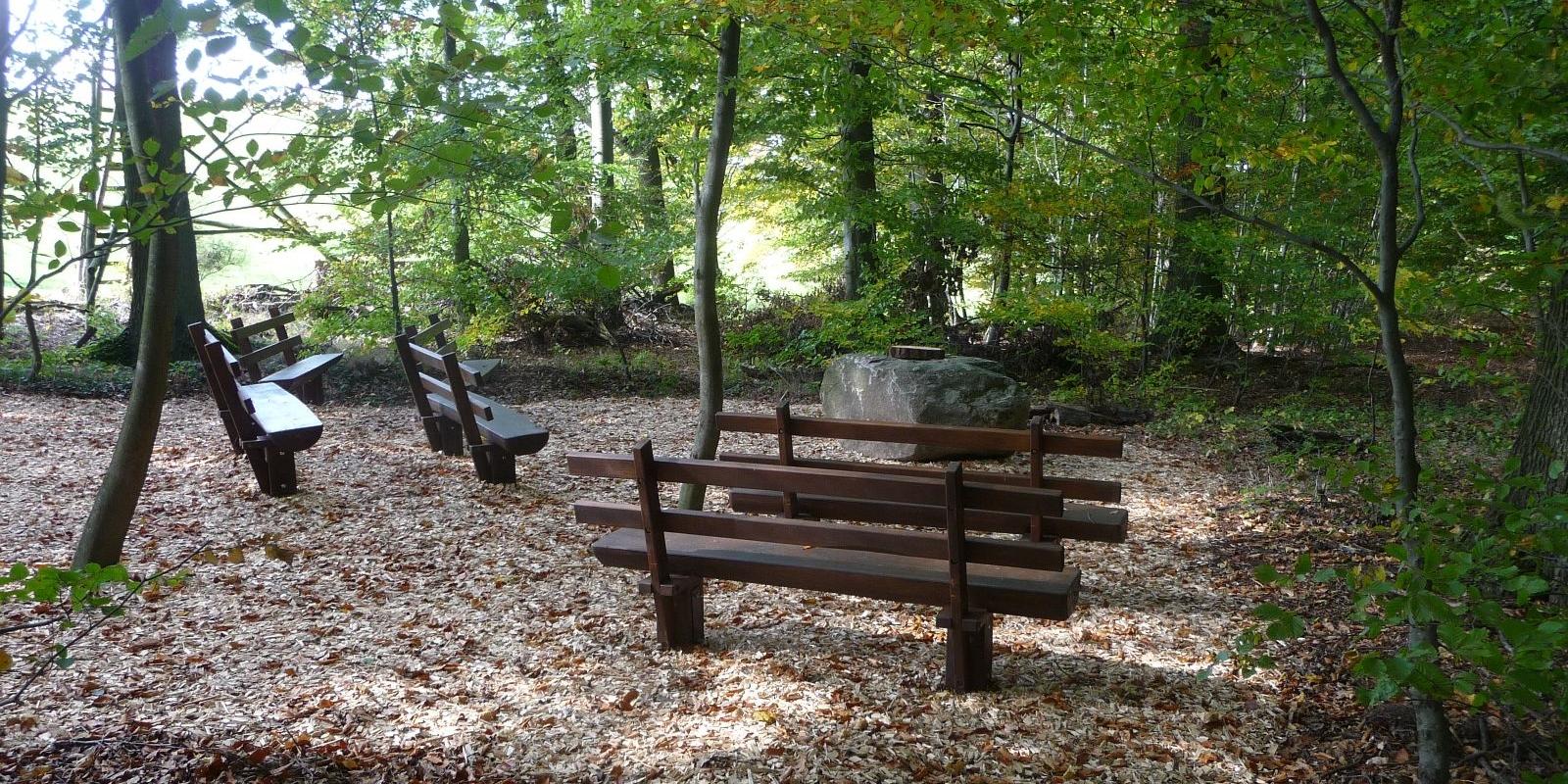 Gedächtnisplatz im Bestattungswald 12 Apostel