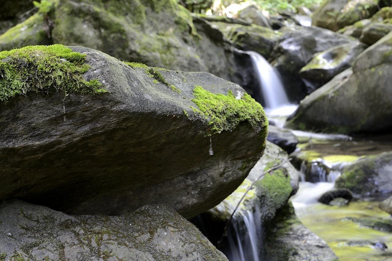 Bach Wasser Steine